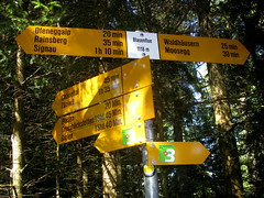Wegweiser Blasenflue (BE - 1`118m) , Kanton Bern , Schweiz (chrchr_75) Tags: del schweiz switzerland site suisse map hiking swiss plan du trail bern christoph svizzera mappa berne wandern berner chemin sito 1009 weg berna hikingtrail wanderung tafel emmental wanderweg wegweiser suissa blasen markierung zziwil standort kanton chrigu wanderwege kantonbern brn wanderwegweiser chrchr hurni chrchr75 chriguhurni mmital mmitau wanderwegmarkierung bernerwanderwege standorttafel sidkarta sivustokartta albumstandorttafelsammlung albumbernerwegweiser pedstre wegzeit blasehubel hurni100920