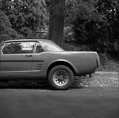 History for sale (R._s.) Tags: auto park street classic ford 120 6x6 film car rollei vintage iii voigtlander bessa maryland baltimore retro 150 roland fujifilm 100 mustang agfa rodinal 667 apx richsteinbach gf670 richardsteinbach