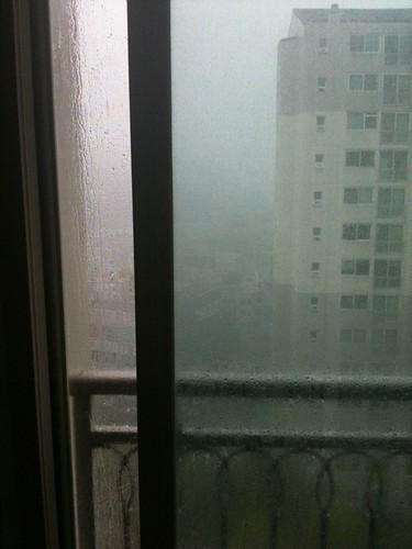 우리집에도 드디어 폭우가...;;;