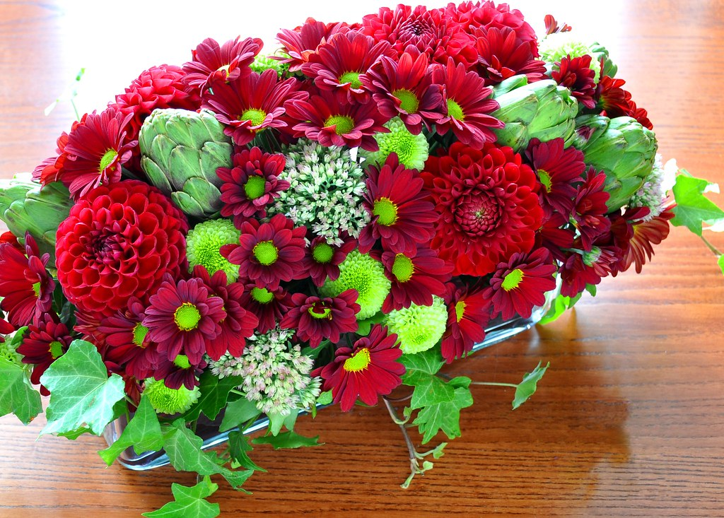 Burgundy daisy type chrysanthemums