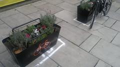 great idea - flower pots that double as bike parking