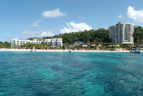 É a temporada para ir festejar em Jamaica!