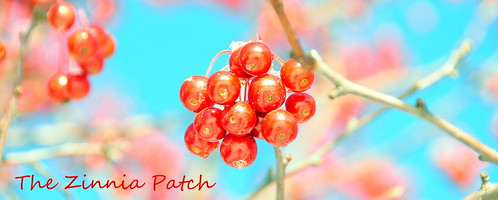 winter berries header - 2009/10
