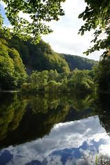 Reflections (BeritBjork) Tags: trees lake green nature water mirror skåne sweden natur sverige vatten träd sjö spegel grönt