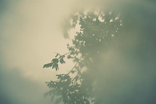 september3010_1