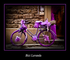 Bici II. La vici y Lavanda (Kepa_photo) Tags: art bike bicycle raw bicicleta olympus cycle florencia bici zuiko euskalherria euskadi paisvasco 43 ciclo lavanda fourthirds olympuse1 digital43 livemos kepaphoto kepaargazkiak