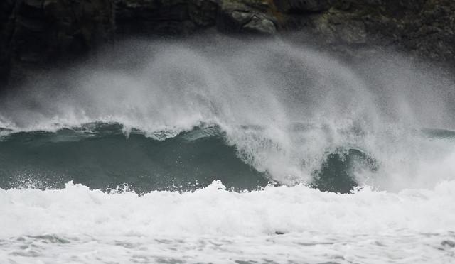 wave Pantìn