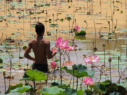 Mui Ne - White Sanddunes - Lilly Pond - Man Wading Into the Water