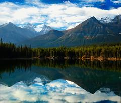 Hector Lake (Akshay.M) Tags: lake canada mountains reflection calgary nature water landscape rockies nationalpark nikon jasper hector alberta banff prairies akshay yoho d90 akshaym