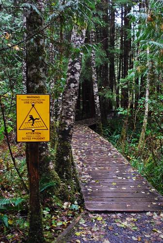 Warning: Slippery Bridges Make You Dance