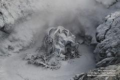 solfatara shs_n3_018609 (Stefnisson) Tags: iceland mud pot geothermal myvatn sland hver solfatara nmaskar mvatn fumaroles hverir leirhver hverasvi jarhiti stefnisson