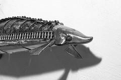 esturgeon tete (pedrobigore) Tags: sculpture chien table bateau poisson métal fer masque acier danseuse récup volant bestioles récupération soudure soudeur féraille akouma hipocamppe