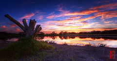 Wetlands Panorama (Kansas Poetry (Patrick)) Tags: sunset lawrencekansas bakerwetlands wakarusawetlands patricklovesnancydearly