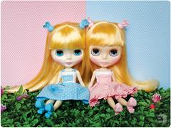 Alice e Brenda