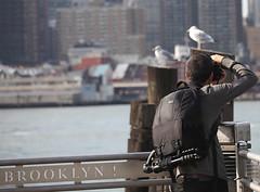 Brooklyn! Photographer (Alvim Gimarino) Tags: nyc newyorkcity brooklyn photographer eastriver brooklynbridgepark canon5dmark2eos