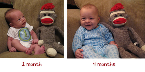Judah's Growth