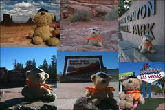 Zuffi's USA Trip (minispace) Tags: usa movie amelie arno ameliepoulain 2010 zuffi minispace kempers arnokempers