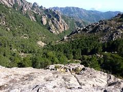 Remontée finale : l'affluent Castellucciu et vue du Finicione vers l'aval