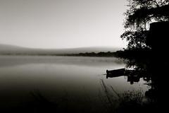 Morning Fog on the Zambezi River. (Shady_Myskus) Tags: victoriafalls zambia zambeziriver livingstonezambia
