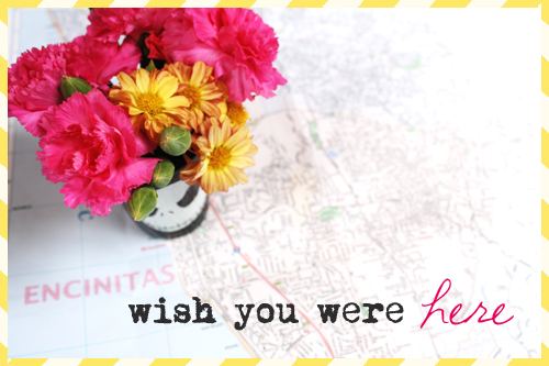 Wish you were here *flowers*