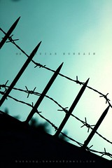 Barb Wire (Shahriar Xplores...) Tags: sky sun set canon eos evening image dhaka sell bangladesh gettyimages aisa 550d kiss4 t2i fter canon550d requesttolicense shahriarphotography