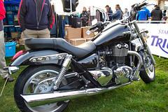 motorcycles triumph thunderbird motorbikes