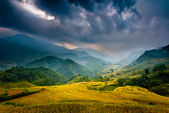"""Mountain Storm"" Vietnam~Asia~Sapa~Landscape~Photography~Travel (Dan Ballard Photography) Tags: world pictures travel favorite mist mountain inspiration storm mountains color nature colors beautiful clouds photography hope amazing asia gallery day photographer rice photos pics magic great harvest free best vietnam explore photographs photograph valley land fields prints ballard portfolio agriculture coulds sapa cloudscapes gallary photograpy coloradophotographer danballard danballardphotography danballardphotogarphy terrices riceterrices printforsell"