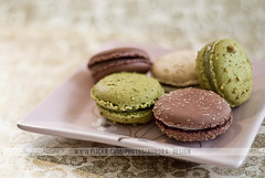 Vintage Macarons II (Naomi Rahim (thanks for 5 million visits)) Tags: french dessert sweet chocolate pistachio sweets dreamy confectionary macaroons macarons visualmerchandising foodstyling professionalfoodphotography
