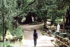 . (Yaris) Tags: chile film nature girl walking kodak concepción zenit sendero lota zenit122 parquedelota