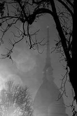 Nella nebbia (Luca Gerbino) Tags: torino mole nebbia turin antonelli vanchiglia alessandro mole antonelliana antonelli