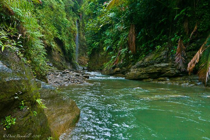 Upper-Navua-River-Fiji