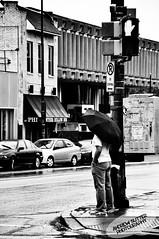 "Dreary Day (Andrew ""Shutter"") Tags: street november urban blackandwhite white man black fall cars wet rain contrast umbrella photography high nikon pittsburgh pennsylvania highcontrast dreary andrew tagged pa walker rainy dontwalk crosswalk streetcorner 2010 streetcrossing d90 pittsburghpennsylvania nikond90 andrewsutter andrewsutterphotography"