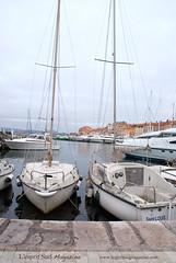 Saint Tropez - Old port (Scrumptious Venus) Tags: travel provence sainttropez frenchriviera lespritsudmagazine