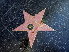 Someone spilled juice on Jack LaLanne's star.