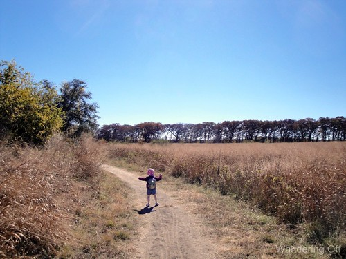 On the Trail, Cibolo Nature Center