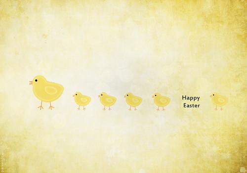 Super Cute Chicken Wallpaper Photoshop