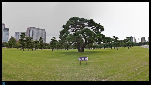Japón_P-20101029-0003.jpg