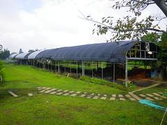 活力健康農場