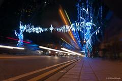 22 [Nov] The night is still young (dipalbhagde) Tags: road city longexposure night singapore sidewalk busy esplanade shutterlag pedestrianway