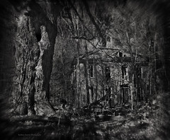 Despicable Sin (Rodney Harvey) Tags: abandoned blackwhite decay banshee infrared mansion trespasing