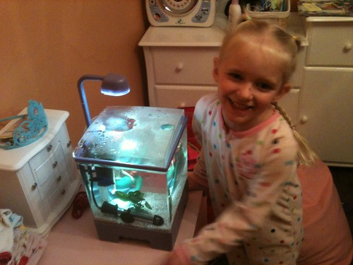 Sophia & Mr. Betta Mk. II