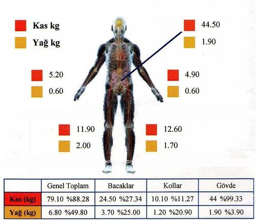 vücut yağ yüzdesi kas kütlesi resimli egzersiz hareketleri görüntülü