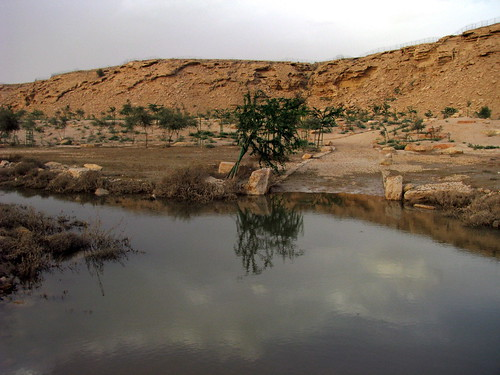 Wadi Hanifah pools
