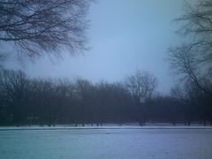 Plano Texas Winter Storm, 2/1/2011