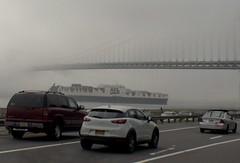 Verrazano Bridge 78 (stevensiegel260) Tags: verrazanobridge thenarrows ship fog beltparkway