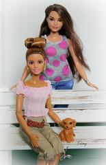 Fashionista Sisters (wizgerg3) Tags: mattel barbie madetomove fashionista curvygirl