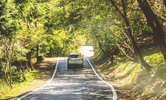 Beautiful Country Road@Wuling Farm, Taiwan.武陵農場像國外般的林蔭鄉間小道~😊❤👍 (Evo-PlayLoud) Tags: canoneos550d canon550d canon 550d efs18135mmf3556 efs 18135mmkit 18135mm landscape scenery hdr car countryroad trees tree green wulingfarm taiwan taichung sunlight sunshine lightfantasy lightshadows 台中 武陵農場 雪霸國家公園 風景 風景照 鄉村 台灣