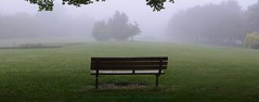 have a seat (Rex Montalban Photography) Tags: rexmontalbanphotography park bench fog jayceepark stcatharines