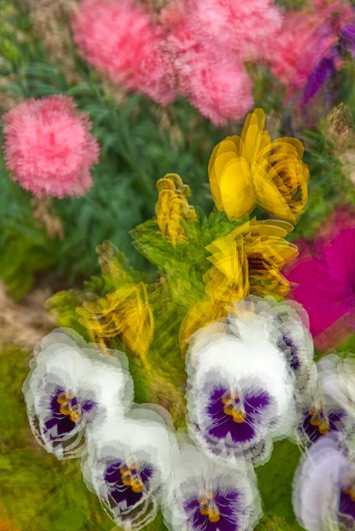 Impressionist Flowers