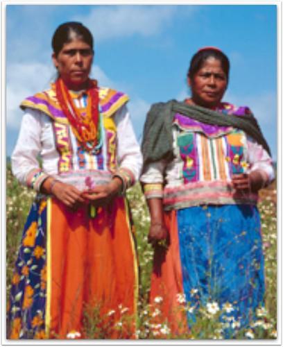 lengua grupo indigena coras: